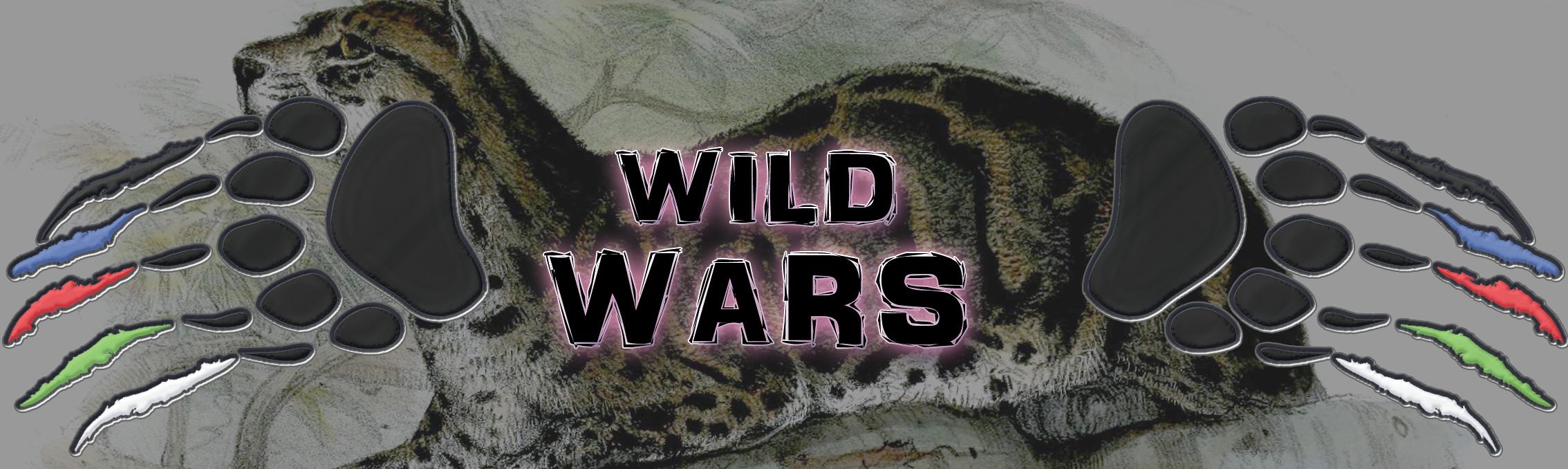 Large Wild Wars Banner