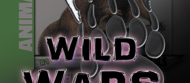 Update: 5 Wild Wars Beginner Decks Go Live